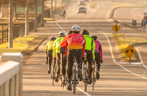 Group of cyclists on road in Upper Hutt